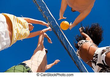 gracze, netto, plaża, -, siatkówka