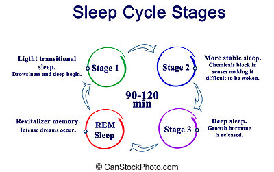 gradacja, sen, cykl