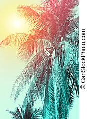 gradiente, cor, árvore coco, desenho