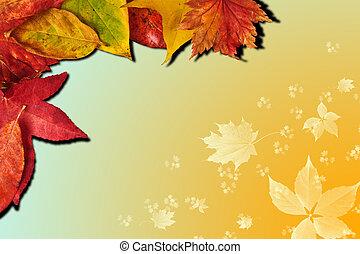 gradiente, vibrante, folhas, estação queda, outono, fundo, enfraquecido