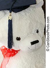 graduación, oso, teddy