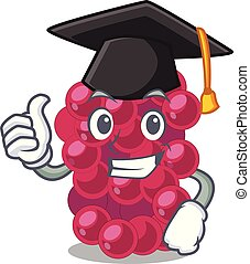 Graduation mulberry in the character fruit basket vector...