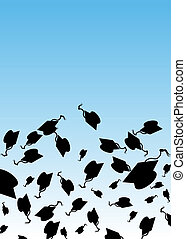 graduazione, cappello, lanciare in aria