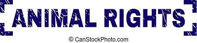 graffiato, diritti, francobollo, angoli, sigillo, animale, textured, fra