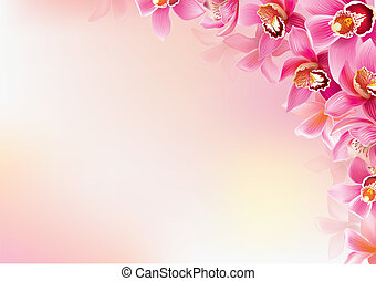grafické pozadí, o, orchidej