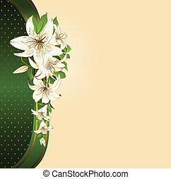 grafické pozadí, s, překrásný, květiny