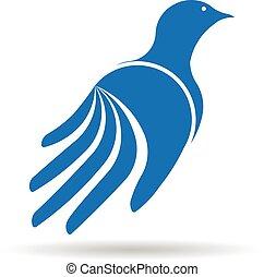 grafický, logo., rukopis, vektor, design, holub