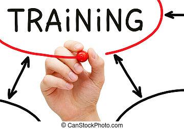 grafico, addestramento, flusso