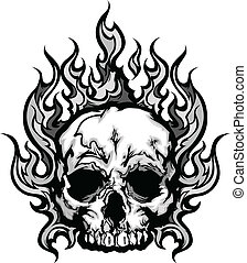 grafico, vettore, fiammeggiante, immagine, cranio