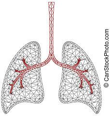grafik, lunge