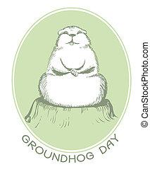 grafik, postkort, vektor, baggrund, groundhog, dag