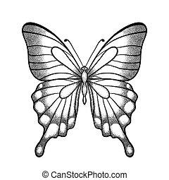 grafik, strokes., linien, freigestellt, eins, hand-drawn, schwarz, weißes, kontur, butterfly.