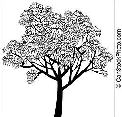 grafikus, fa, fiatal, vektor, virágzás, rajz