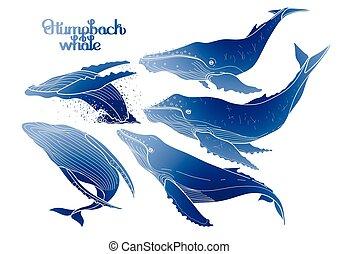 grafikus, púpos ember bálnavadászat