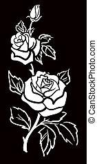 grafische kunst, roos, vector, bloem, w
