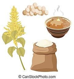 Grain amaranth flowers and leaves. Vector illustration.