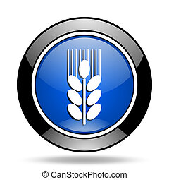 grain blue glossy icon