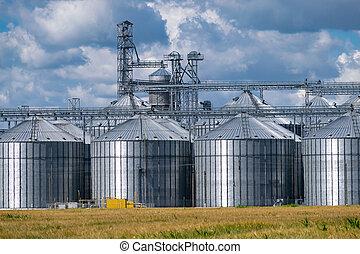 Grain elevator silos near the wheat field