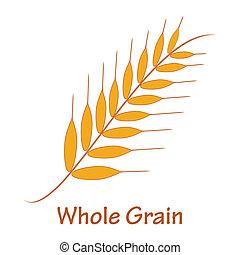 grain entier
