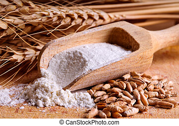 Grain, flour and wheat - Close up with grain, flour and ...