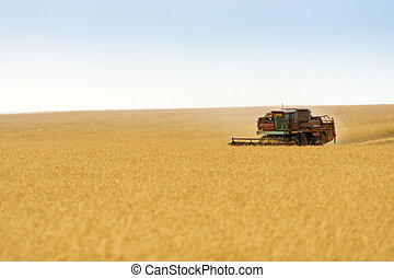 grain harvester combine in field