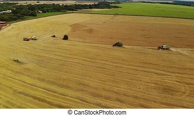 grain harvesters work in field in Russia - Top view of...
