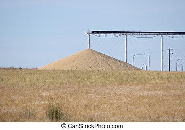 Grain pile and conveyor system