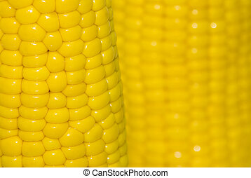 grain - portion of fresh corn on white , yellow , texture