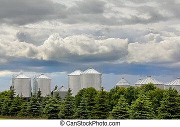Grain storage bins in rural Saskatchewan