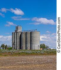 Grain storage facility with silos