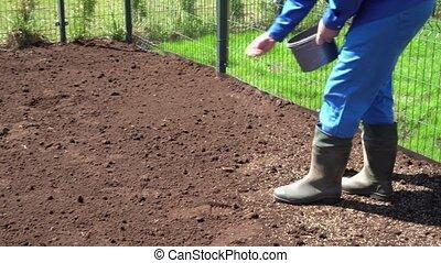 graines, yard., pelouse, maison mitoyenne, fertile, mains, semailles, sol, nouvel homme