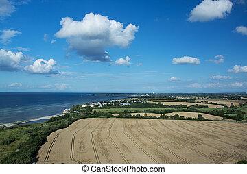 grainfield, nær, laboe, tyskland