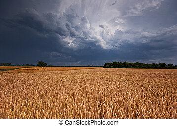 grainfield, og, storm
