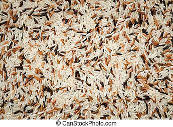 grains, détail, mélange, fond, cru, riz