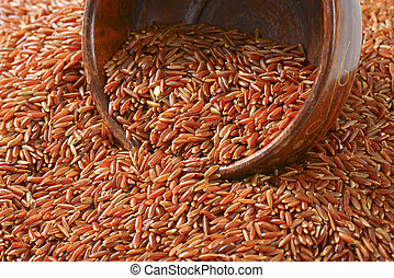 Camargue red rice - Grains of Camargue red rice (Grown ...