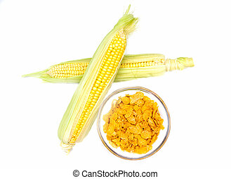 Grains of corn on a white background seen from above