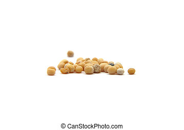 Grains of mustard seed on white