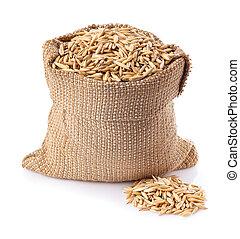 grains of oat in burlap bag isolate
