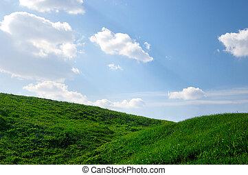gramíneo, colinas, sob, céus azuis