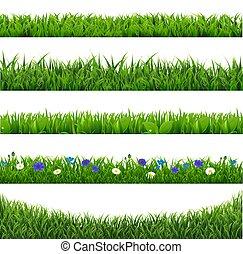 grama verde, borda, isolado, cobrança