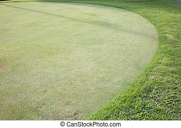grama verde, campo, de, campo golfe, desporto, fundo