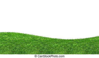 grama verde, curva, isolado, em branco