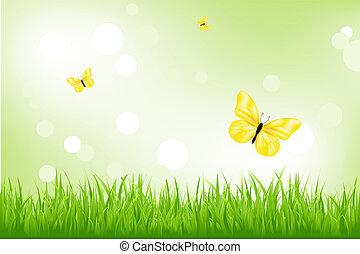 grama verde, e, amarela, borboletas