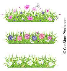 grama verde, e, flores