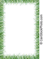 grama verde, papel, verão, fundo
