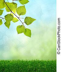 grama verde, primavera, fantasia