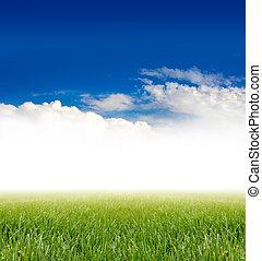 grama verde, sob, céu azul