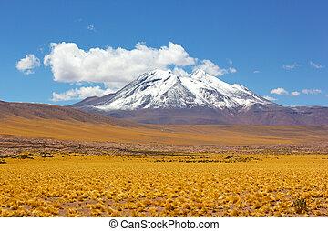 gramado, e, montanhas, com, neve, picos, ligado, horizonte, em, a, deserto atacama, chile.