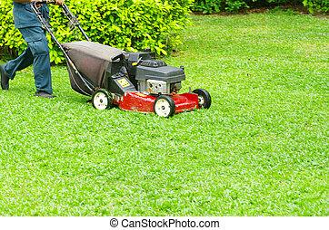 gramado,  Mowing