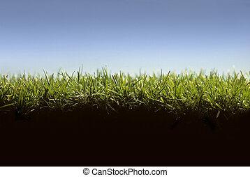 gramado, nível, mostrando, crucifixos, capim, seção, chão